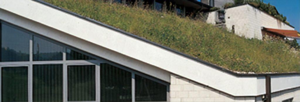 Sustainable Vinyl Roof